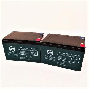 R  Pack 2 baterías AGM